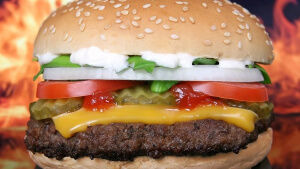 iifym diet cheeseburger