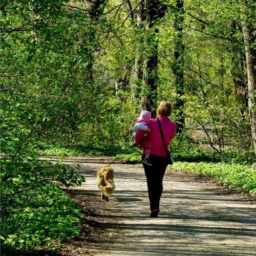 non exercise activity thermogenesis
