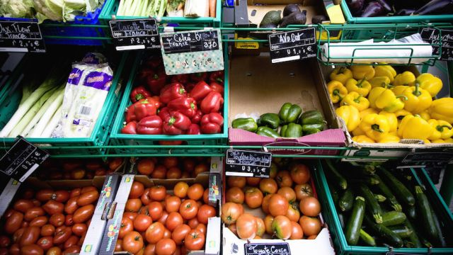 organic vs conventional