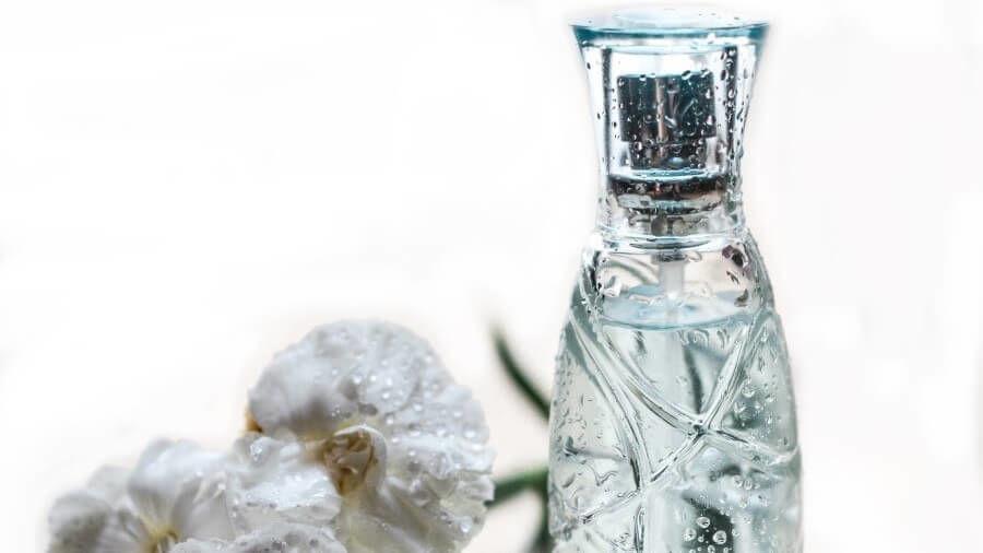 fragrance free organic tampons